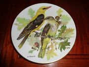 Pirol Oriolus Oriolus Collectors Plate Boxed