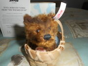 Steiff Toto From The Wizard Of Oz Very Rare 2012 Limited Ed. Mint Box/coa