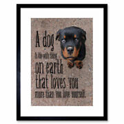 Quote Typography Love Dogs Cute Puppy Framed Wall Art Print 12x16 In