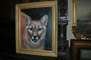 The Most Beautiful American Mountain Lion Head Painting By Well Known Artist