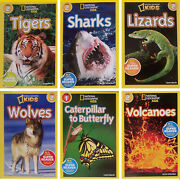 National Geographic Readers Tigerssharkscaterpillar To Butterfly +paperback