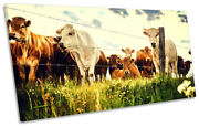 Cow Field Farm Picture Panoramic Canvas Wall Art Print