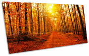 Orange Forest Trees Sunset Print Panoramic Canvas Wall Art Picture