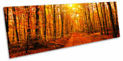 Orange Forest Trees Sunset Print Panorama Canvas Wall Art Picture