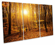 Orange Forest Sunset Trees Print Treble Canvas Wall Art Picture