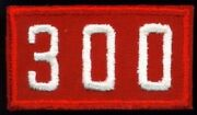 Bsa Troop Unit Numeral Number 300 Custom Made Circa Late 1960and039s - Twill