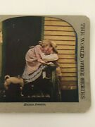 Antique 1900and039s Stereoview Stolen Sweets Couple Kissing- Dog Hiding Under Skirt