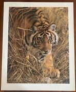 New Print Tall Grass Tiger By Carl Brenders Wall Picture Hunting 22.5 X 29