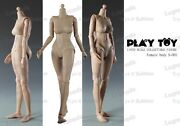 Play Toy 16 Female Small Breast Nude Body Action Figure Play-s001