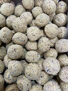 300 Wild Bird Fat Balls 2 X150 The Best Quality Balls Free Next Day Delivery