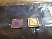 2 Ads1000a Gold Cpu Vintage Western Digital Memory Chips New Ic Rare 59