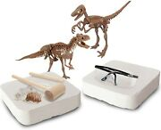 Discovery Dinosaur Fossil Dig Excavation 2 Pack Kit T-rex And A Velociraptor