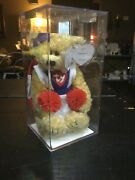 Ty Attic Treasure Tyra With Pom Poms - Authenicated-extremely Rare