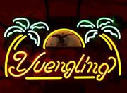 Yellow Yuengling Lager Eagle Neon Light Sign 24x20 Beer Bar Cave Artwork Glass