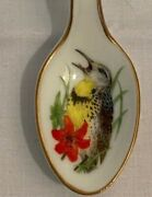 Vintage Porcelain Spoons Set With Bird Designs Lot Of 6 - With Gold Rim