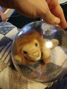 Ty Beanie Babies Rare Retired Roary 1996. Smoke Free Home Comes In Case