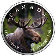 Canadas Wildlife 2021 Moose Maple Leaf 1 Oz Silver Canada Numbered Product Card