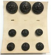 Wolf Brown Uniform Insignia Button 9pc Set Navy Marine Us Military Eagle Anchor
