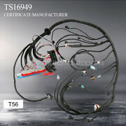 1997-2006 Dbc Ls1 Standalone Wiring Harness   T56 Or Non-electric   4.8 5.3 6.0