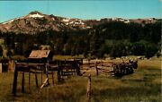 Cattle Corral And Cowboy's Retreat In The High Sierras Of California