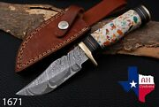 Custom Hand Forged Damascus Steel Hunting Knife W/risen And Brass Guard Handle1671