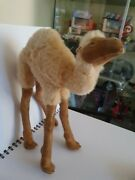 1950's Antique Camel Soft Toy With Glass Eyes Possibly Steiff