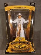 Wwe Hbk Shawn Michaels Defining Moments Rare Excellent Condition Rare