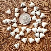 Natural Howlite Loose Gemstones Trillion Cabochon Shape Size In 21mm To 25mm