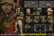 Damtoys 78084 1/6 Operation Red Wings -navy Seals Sdv Team 1 Corpsman Figure
