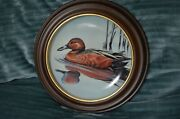 Cinnamon Teal By Gerald Mobley 1991 Framed 8 1/2 Collectible Plate 7th Issue