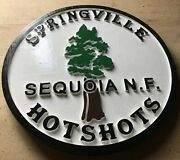 Fire Department Springville Hotshots 3d Routed Wood Patch Plaque Sign Custom