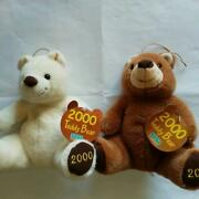 Rare Sega 1999 Pair Teddy Bear Not For Sale With Tag Plush Toy Shipped From Jap