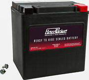 Factory Activated Sealed Battery Agm Yb30l-b Arctic Cat Prowler Xt 550 2010-2015