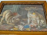 Antique Paper Litho Print 2 Naughty Pug Dogs And A Punch Doll Framed C.1900