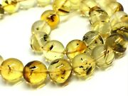 Islamic 33 Prayer Beads Insect In Every Bead Baltic Amber Tasbih 199g 15183