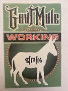 Govt. Mule Official Working Backstage Pass
