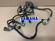 Yamaha Raptor 660 Harness Wiring Wire Electrical 2005 Only Oem 660r 05'