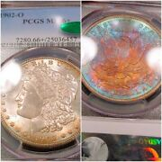 1902-o Pcgs Ms66+ Plus Cac Monster Rainbow Toned Color Morgan Luster Bomb