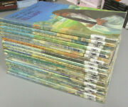 19 Vintage Now You Can Read Bible Stories Childrens Books