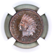 1874 Pf65 Rb Ngc Indian Head Penny Premium Quality Proof Example