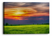 Countryside Landscape Abstract Green Orange Canvas Wall Art Picture Home De...