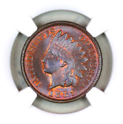 1889 Ms65 Bn Ngc Indian Head Penny Premium Quality Superb Eye-appeal