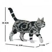 Jekca St19asc02 M01 Solid Jigsaw Puzzle Cat Series American Shorthair Animal Toy