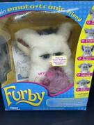 Not Released In Japan 2005furby White Blue Eyes English