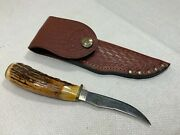 Case Xx Knife Usa 525-3 1/4 Ssp 10 Dots Vintage 1980 Stag Fixed Blade Pheasant