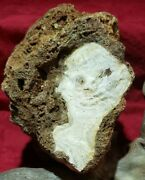Natural Rock Phenomenon - Unusual And Collectible 1 In The World 👽best Offer