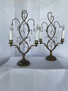Rare Vintage Copper And Crystal Italian 1940's Lamps Antique Floral Design 2 Lamps