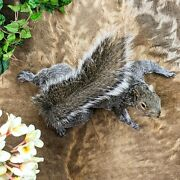 L44h Taxidermy Oddities Curiosities Grey Squirrel Climbing Wall Hanging Mount