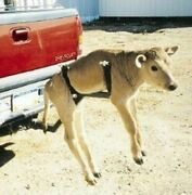 Calf Carrier Receiver Hitch Mounted Easy Lift Transport Humane Safe Tagging