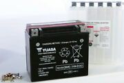 H-p Fresh Pack Agm Maintenance Free Battery Ytx20h-bs Harley Wide Glide 1980-86